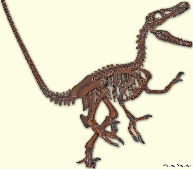 velociraptor painting related keywords - photo #22