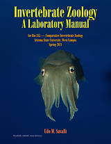 pechenik biology of invertebrates